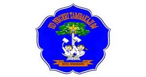 SD Negeri Tambakaji 04 Semarang