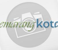 Informasi Kota Semarang Terkini