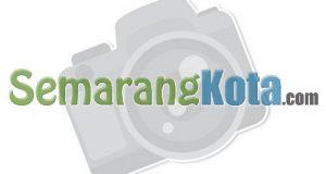Outlet Kedai Kopi - Coffee Shop - Semarang Kota